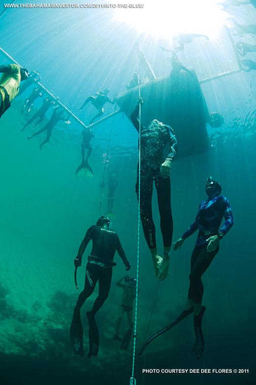 Free Diving The Bahamas