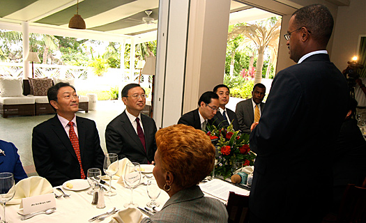 Welcome luncheon in honour of the visit of Yang Jiechi